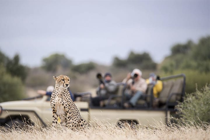 Viaggio-fotografico-Botswana