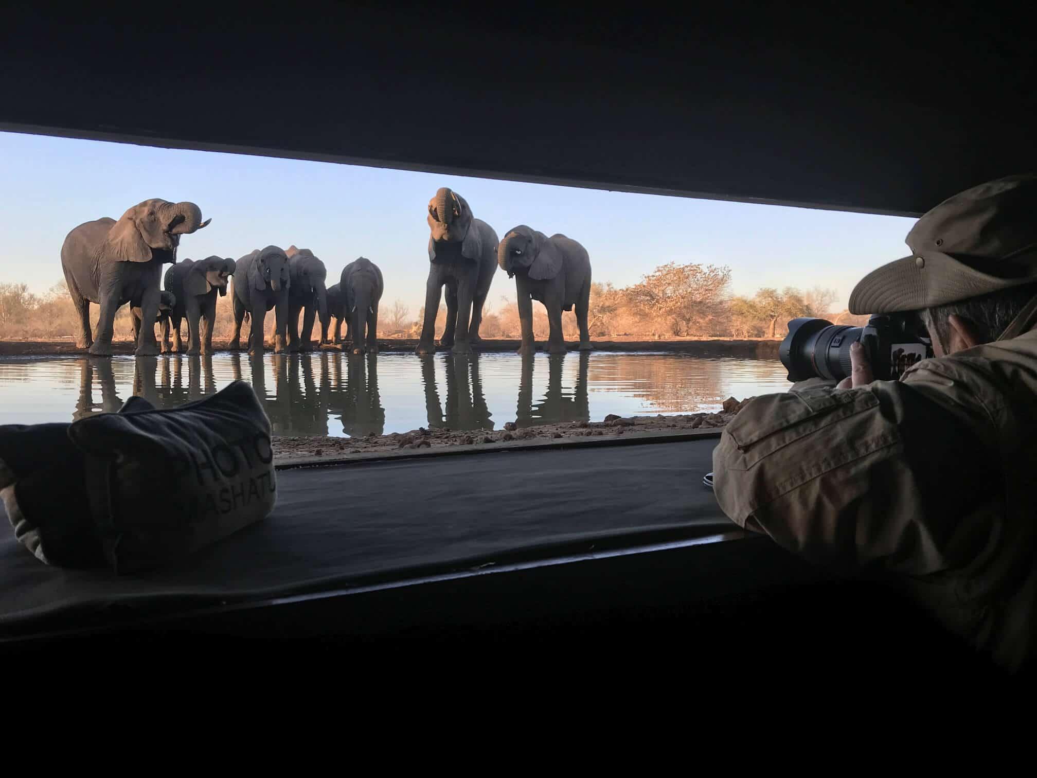 Viaggio fotografico Botswana
