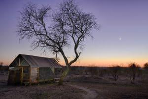 Sudafrica Manyeleti Photo Tour