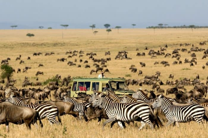 Tanzania – Photo Migration (North)